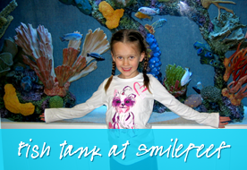 Fish Tank At SmileReef - Smile Reef Pediatric Dentistry
